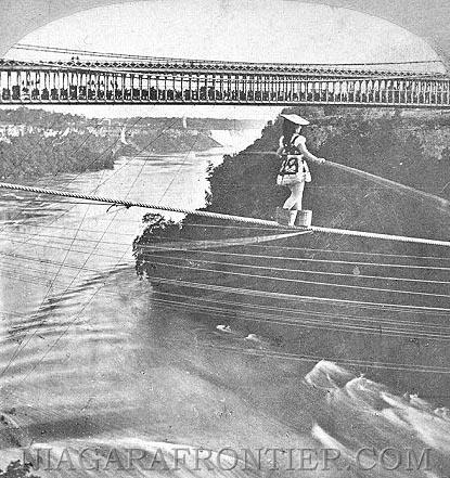 Niagara Falls Daredevils: a history