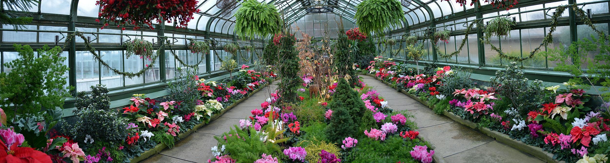 Niagara Falls Floral Showhouse Greenhouse